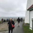 Brid at the lighthouse